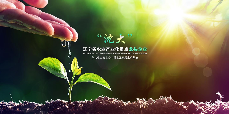 辽宁化肥厂家