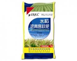 水稻返青客杈肥
